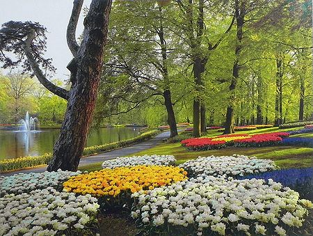 Keukenhof Garden in Amsterdam, Holland