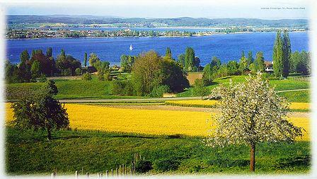 Untersee Lake - Switzerland - Photo by Dietz