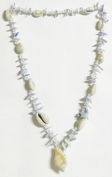Painted Shell Necklace in Light Blue with White Cowrie