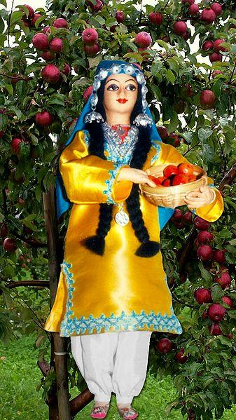 Kashmiri Apple Plucker Photo - Unframed Photo Print on Paper