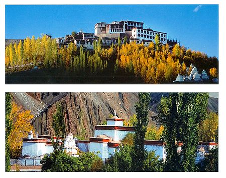Alchi Temple and Matho Monastery, Ladakh - Set of 2 Postcards