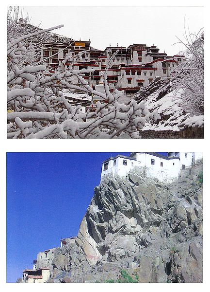 Rizong Monastery During Winter and Spituk Monastery, Ladakh - Set of 2 Postcards
