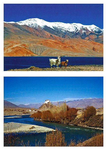 Tsomoriri Lake and Stanka Monastery, Ladakh - Set of 2 Postcards