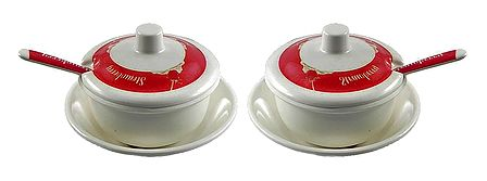 Set of 2 Acrylic Sauce Containers with Spoon