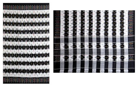 Black and White Katki Cotton Saree with Ikkat Design