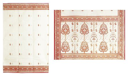 Ivory White Cotton Saree with Printed Red Paisley Border and Pallu