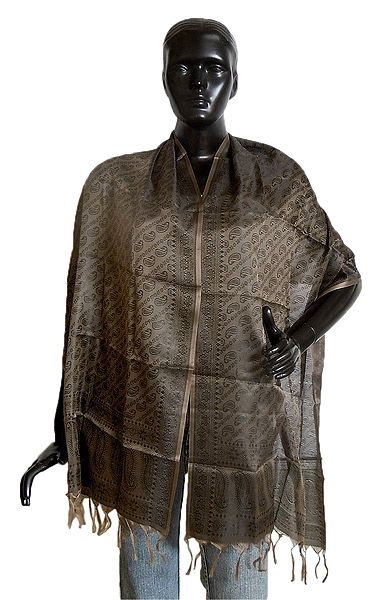 Dark Brown Tanchoi Weaved Banarasi Stole