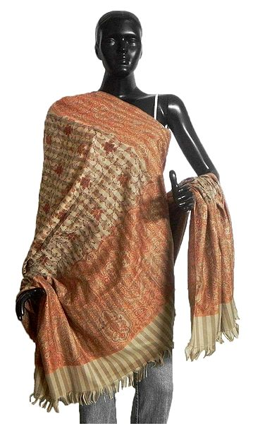 Kashmiri Stitch with Weaved Design on Beige Kani Shawl
