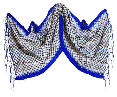 Check Design Woolen Stole with Dark Blue Border