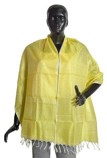 Light Yellow Tanchoi Weaved Banarasi Stole