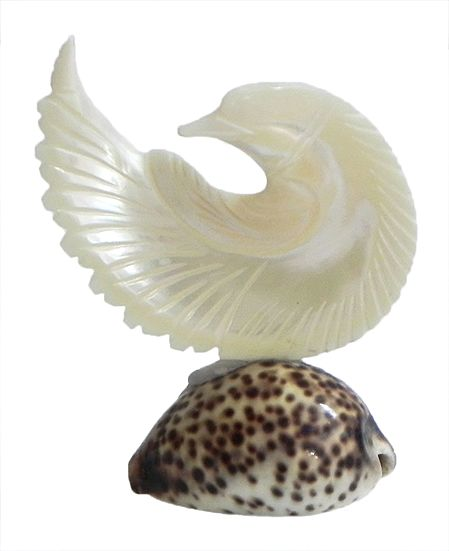 Mother of Pearl Pigeon on Cowrie