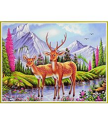 Deer Couple - Wildlife Poster