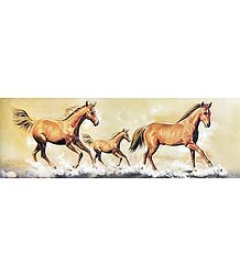 Galloping Beauties - Poster Unframed