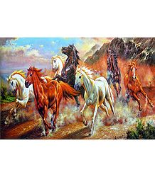 Graceful Wild Horses - Poster - Buy Online