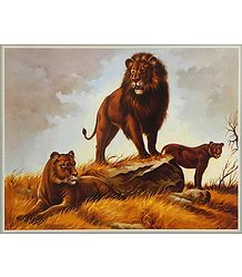 Buy King of the Jungle Poster
