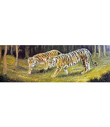 Shop Online Royal Bengal Tiger Poster