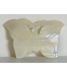 White Butterfly Shaped Brooch
