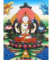 Four-Armed Avalokiteshvara - Thangka Screen Print