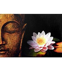 Buddha - The Worshipper of Peace - Poster