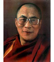 Shop Online Dalai Lama Poster