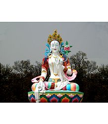White Tara at Mindrolling Monastery in Dehradun - Uttarakhand, India
