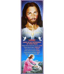 Animal Lover Jesus Christ