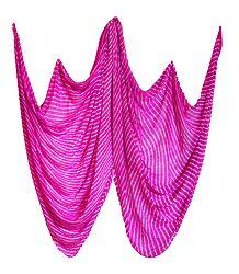 Tie and Dye Magenta Chiffon Chunni