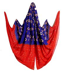 Blue with Red Bandhni Cotton Dupatta