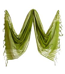 Olive Green Striped Handloom Cotton Dupatta