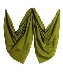 Olive Green Handloom Cotton Dupatta