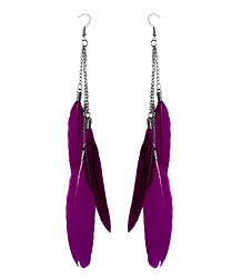 Magenta Feather Earrings