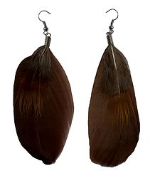 Dark Brown Feather Earrings