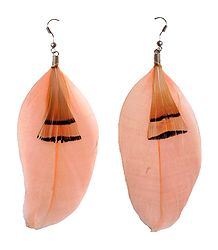 Light Peach Feather Earrings