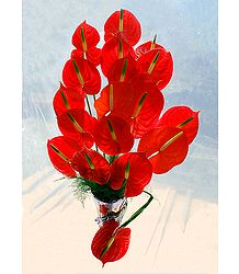 Photographic Print of Red Anthuriums