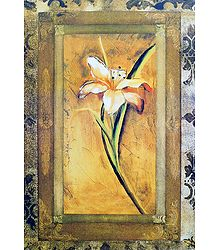 Lily Flower - Unframed  Poster