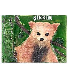 Himalayan Bear Cub - Resin Magnet