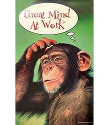 Great Mind At Work