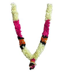 Dark Pink with Off-White, Green and Saffron Cloth Garland