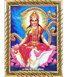 Framed Goddess Gayatri  Picture