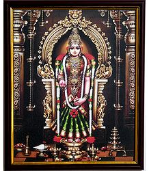 Kanyakumari on Laminated Board