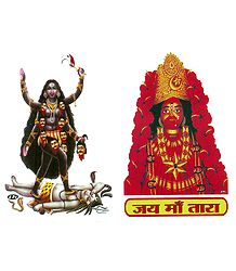 Hindu Goddess Picture on Sticker