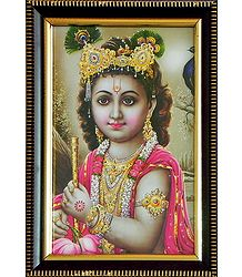 Young Krishna - Framed Picture