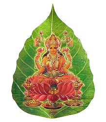 Lakshmi on Pipul Leaf