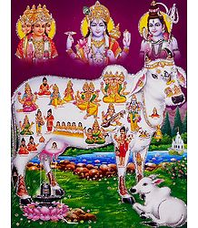 Kamdhenu with Brahma, Vishnu and Shiva - Glitter Poster