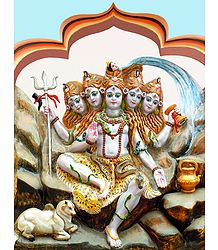 Panchamukhi Shiva - Photo Print