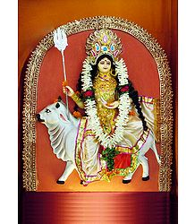 Shailaputri - the First Form of Navadurga