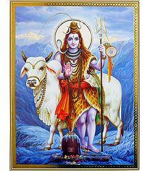 Shiva with His Bull