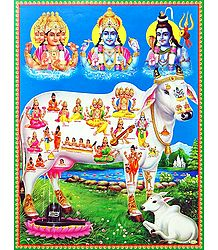 Trinity -Kamadhenu - The Sacred Cow