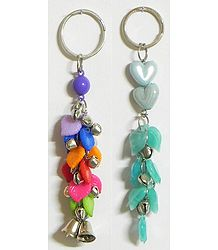 Colors of Nature - Set of Two Key Chains