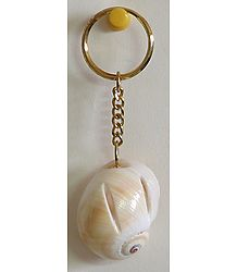 Designer Shell Key Chain